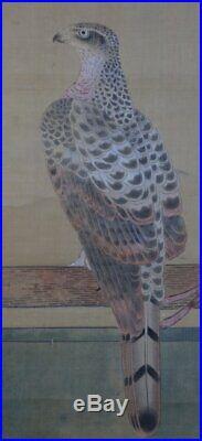 Antique Japanese white Taka falconry Edo art painting 1750s Japan craft
