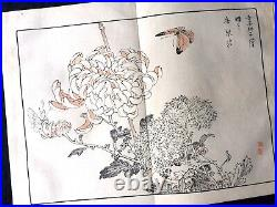 BAIREI Chrysanthemum Flowers birds painting JPN Woodcut album KIKU HYAKUSHU #1