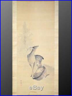 DEER JAPANESE PAINTING HANGING SCROLL Antique OLD Art Japan KAKEJIKU d601