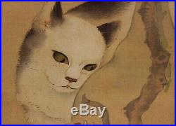 HANGING SCROLL JAPANESE PAINTING JAPAN Cat Peony ANTIQUE PICTURE ORIGINAL 408m