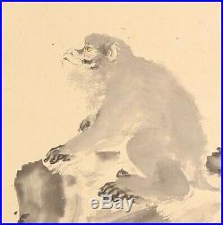 HANGING SCROLL JAPANESE PAINTING JAPAN Monkey ANTIQUE Kakejiku OLD ART d859