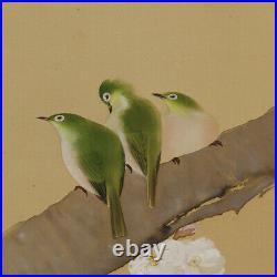 HANGING SCROLL JAPANESE PAINTING Warbler JAPAN BIRD cherry Nightingale 258q