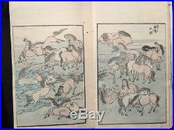 HOKUSAI GAEN Ukiyoe Colored Picture Album Woodblock print 3 Book COMP set Japan