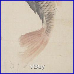 JAPANESE HANGING SCROLL KAKEJIKU / Koi Fish Painting by Shodo Yukawa #677