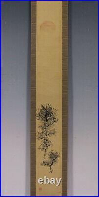 JAPANESE PAINTING HANGING SCROLL FROM JAPAN PINE AGE OLD ART KAKEJIKU 640m