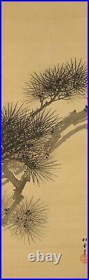 JAPANESE PAINTING HANGING SCROLL FROM JAPAN PINE AGE OLD ART KAKEJIKU 961p
