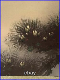 JAPANESE PAINTING HANGING SCROLL FROM JAPAN PINE AGE OLD ART KAKEJIKU e002