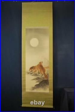 JAPANESE PAINTING HANGING SCROLL From JAPAN Raccoon Dog VINTAGE Moon 428p