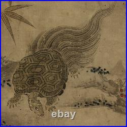 JAPANESE PAINTING HANGING SCROLL JAPAN Old TURTLE ANTIQUE ART e801