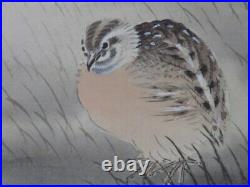 JAPANESE PAINTING HANGING SCROLL JAPAN Quail PICTURE VINTAGE INK AGED ART e385