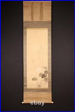JAPANESE PAINTING Rinse Full Moon Autumn grass Hanging Scroll Insect Japan c989