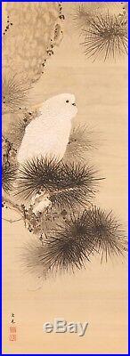 Japanese Hanging Scroll Kakejiku Keinen Bird & Pine Tree Painting on silk with box