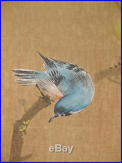 Japanese Painting on Silk, singing bird, flower & spider, Kamijima Sosui