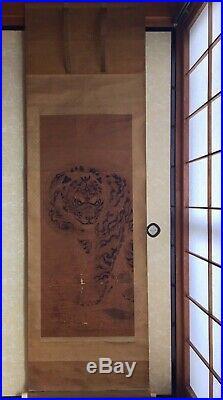Japanese hanging scroll Kakejiku Tiger painting by KANO TSUNENOBU (1636-1713)