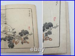 Kono Bairei KIKU HYAKUSHU vol. 1 flowers painting Japanese Woodblock Print Book