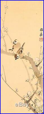 SPARROW JAPANESE PAINTING Bird HANGING SCROLL OLD FROM JAPAN PLUM Picture d576