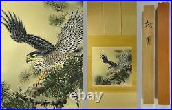 UK439 KAKEJIKU Bird Hawk Animal Hanging Scroll Japanese Art painting Nihonga
