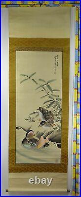 UK475 KAKEJIKU Bird Animal Hanging Scroll Japanese Art painting Nihonga Picture