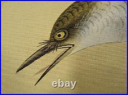 UK488 KAKEJIKU Bird Animal Box Hanging Scroll Japanese Art painting Nihonga